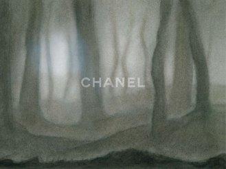 Chanel RTW FW 2011-2012